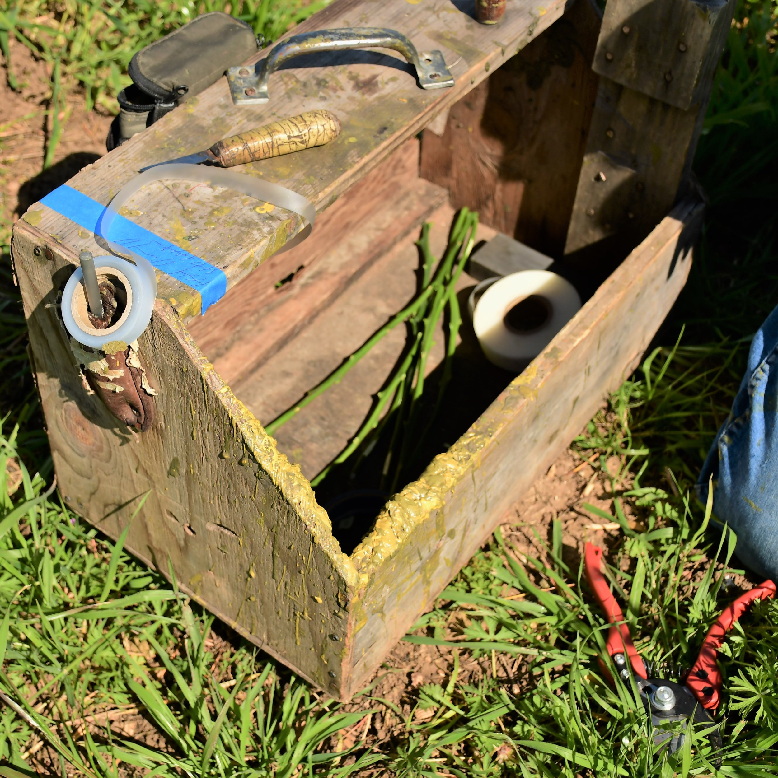 Grafting box.jpg