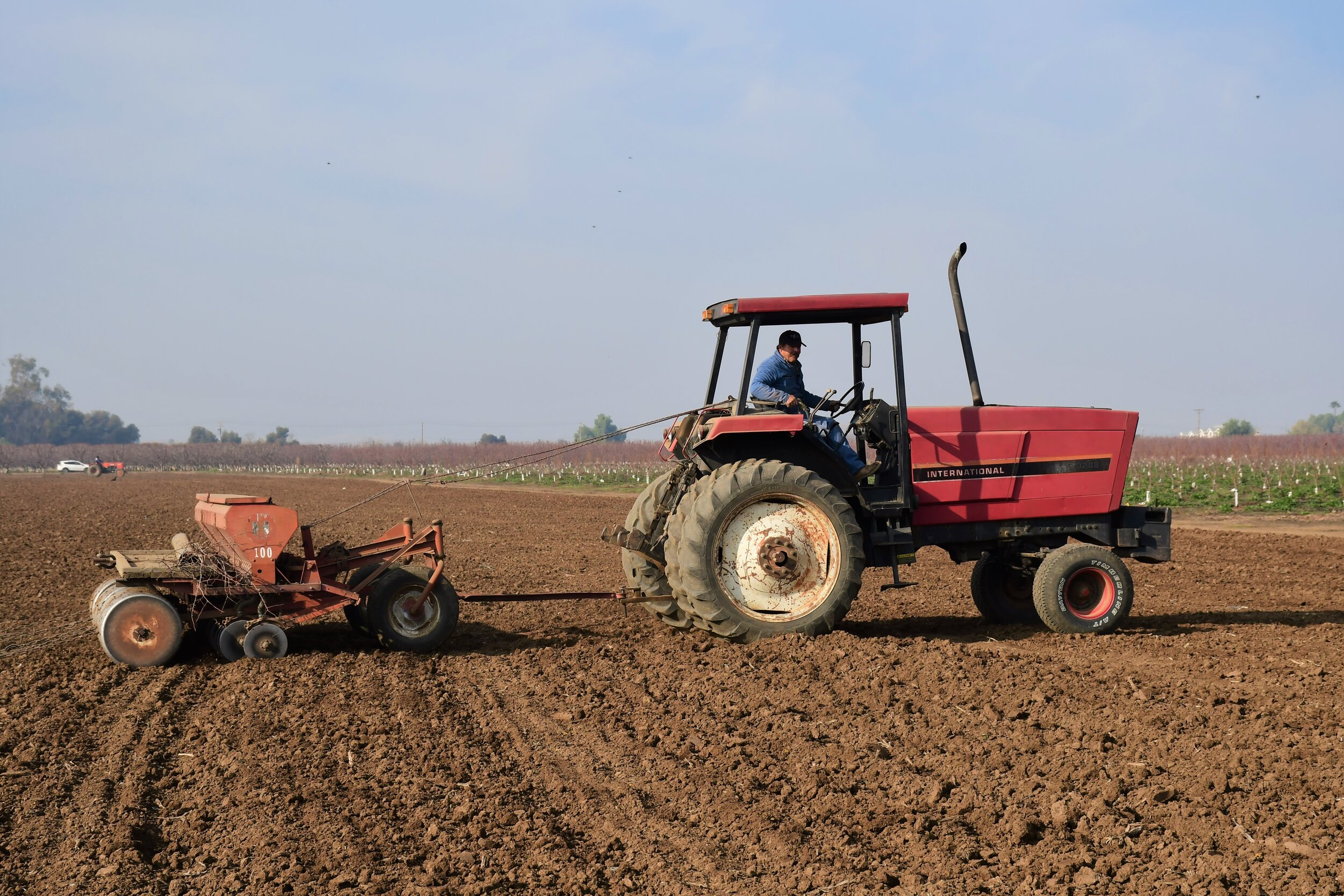 Sonora Wheat Planting 6 - Tractor.jpg