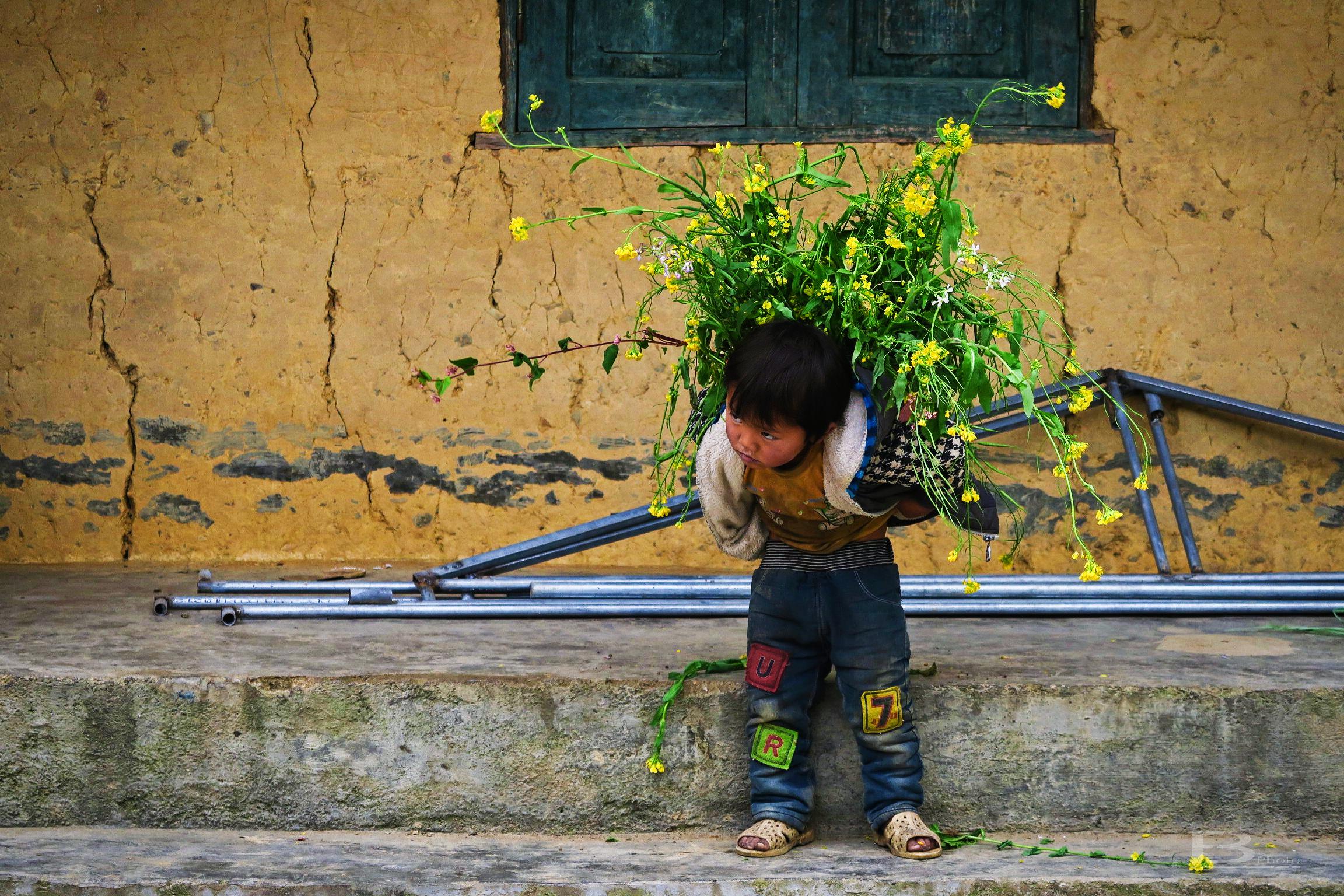 Vietnam_2017_B023_155.jpg
