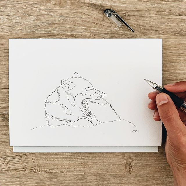 I'm back to work on my yawning animals collection🐺💤 Yawning Wolf is 3/12 is in progress. #mallorymccamyart #yawninganimals #watercolorillustration #artist #wildanimals #illustation #illustrate #linedrawing #simplelife #yawningwolf #wildlife