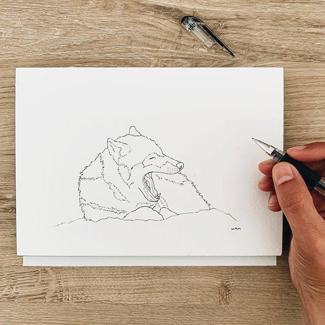 I'm back to work on my yawning animals collection🐺💤 Yawning Wolf is 3/12 is in progress. #mallorymccamyart #yawninganimals #watercolorillustration #artist #wildanimals #illustation #illustrate #linedrawing #simplelife #yawningwolf #wildlife