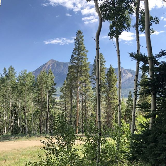 I have the PERFECT place for you to call home and create lifelong adventures and memories starting all year long!⠀ .⠀ Just 3 minutes from Crested Butte is 35 acres ready for private jeeping, hiking, fishing and more. ⠀ .⠀ Want this to be your view from home? Click the link in my bio to learn more!⠀ .⠀ .⠀ .⠀ #crestedbutterealestate #crestedbutterealty #mountainlivingelevated #realestate #coloradorealestate #mountainhomes #dreamhome #futuredreamhome #sliceofparadise #liveyourdream #yourrealtor #sothebysrealty #mountianliving #mountainlivingelevated #homesincrestedbutte #gunnisonvalley #visitgcb #gunnisoncrestedbutte #gunnsionvalleyliving #skicb #gunnisonvalley #westelkwilderness #wildernessstreamscommunity #colorado #familycabin #familyreunion #gunnisonliving #cabininthewoods #coloradocabin #mountainviews⠀