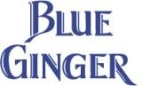 BlueGinger.Twitter.jpg