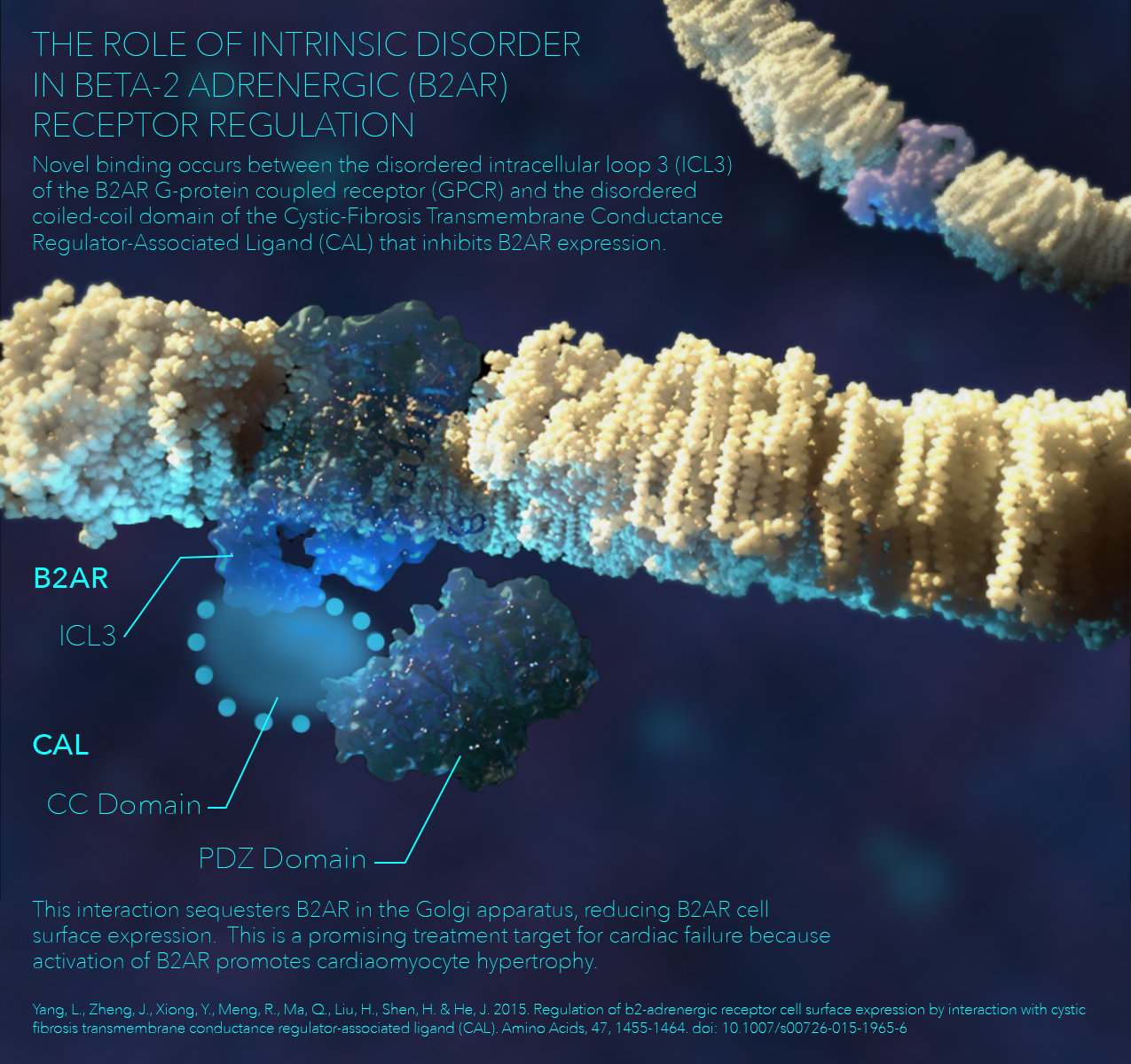 Molecular Pharmacology Poster | Visual Molecular Dynamics (VMD), 3DS Max, Adobe Photoshop