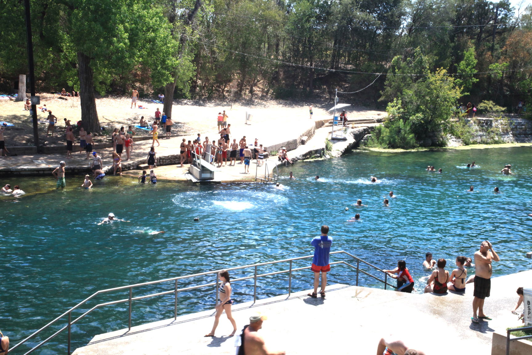 Travis barton springs pool 2.jpg