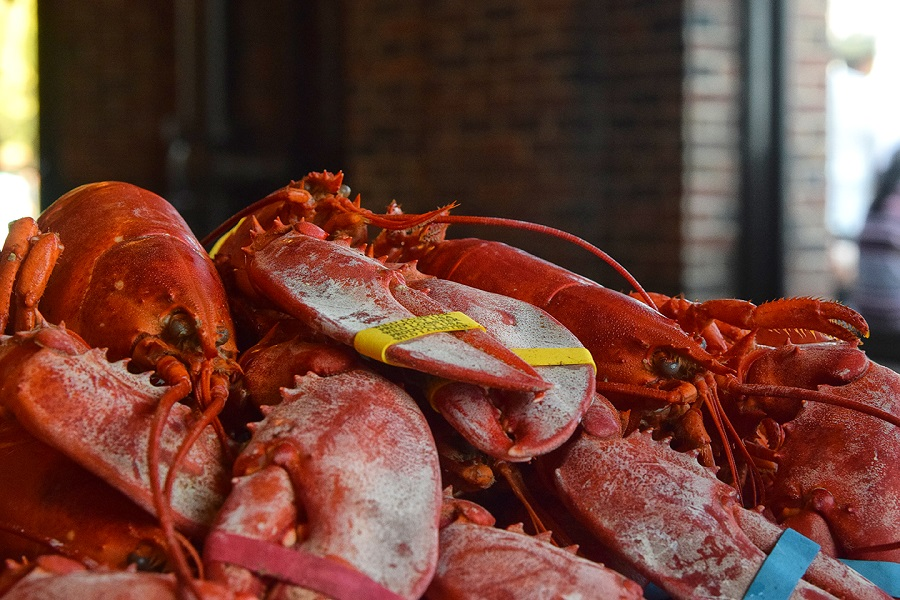 Great American Lobster Fest Navy Pier 36.jpg
