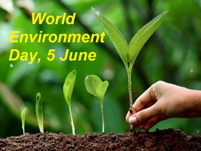 World-Environment-Day.jpg