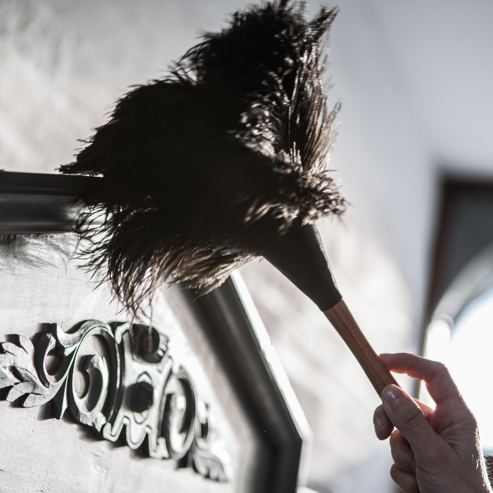 Ostritch feather duster