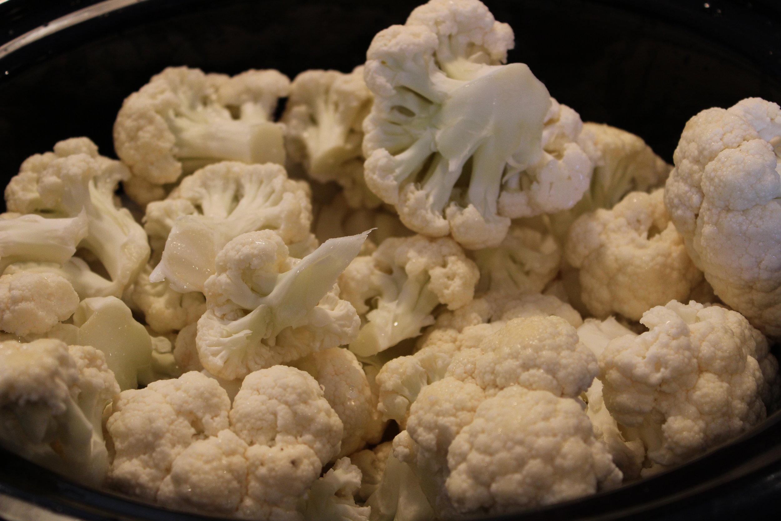 Cauliflower in pot.JPG