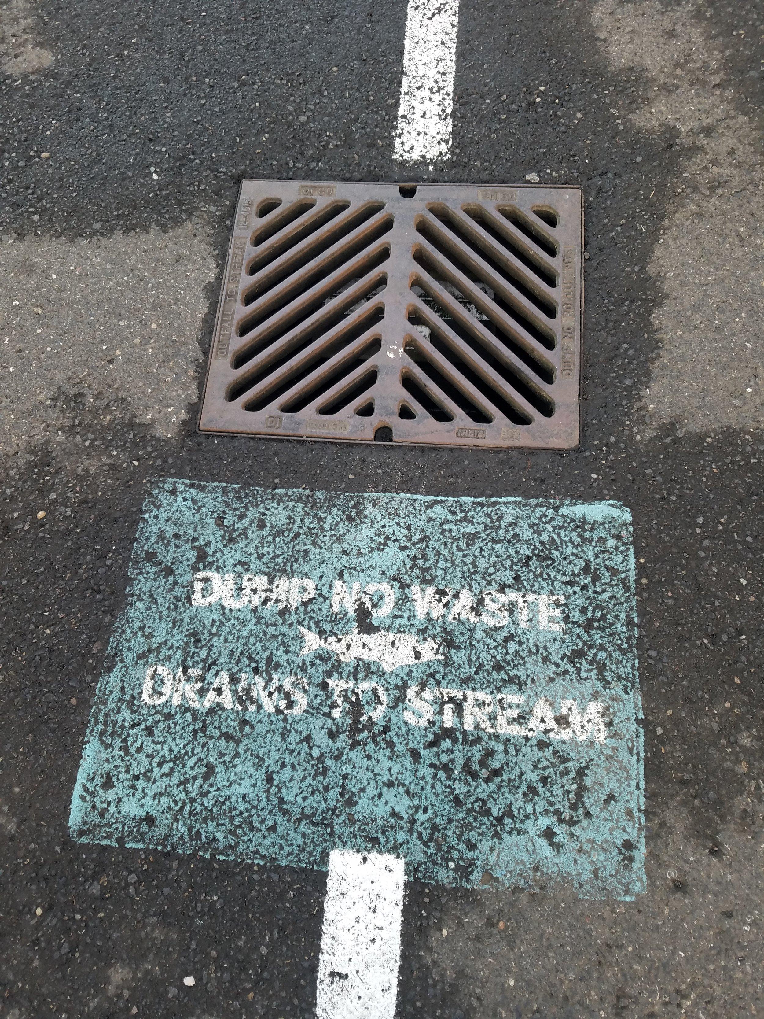 Storm drain grate