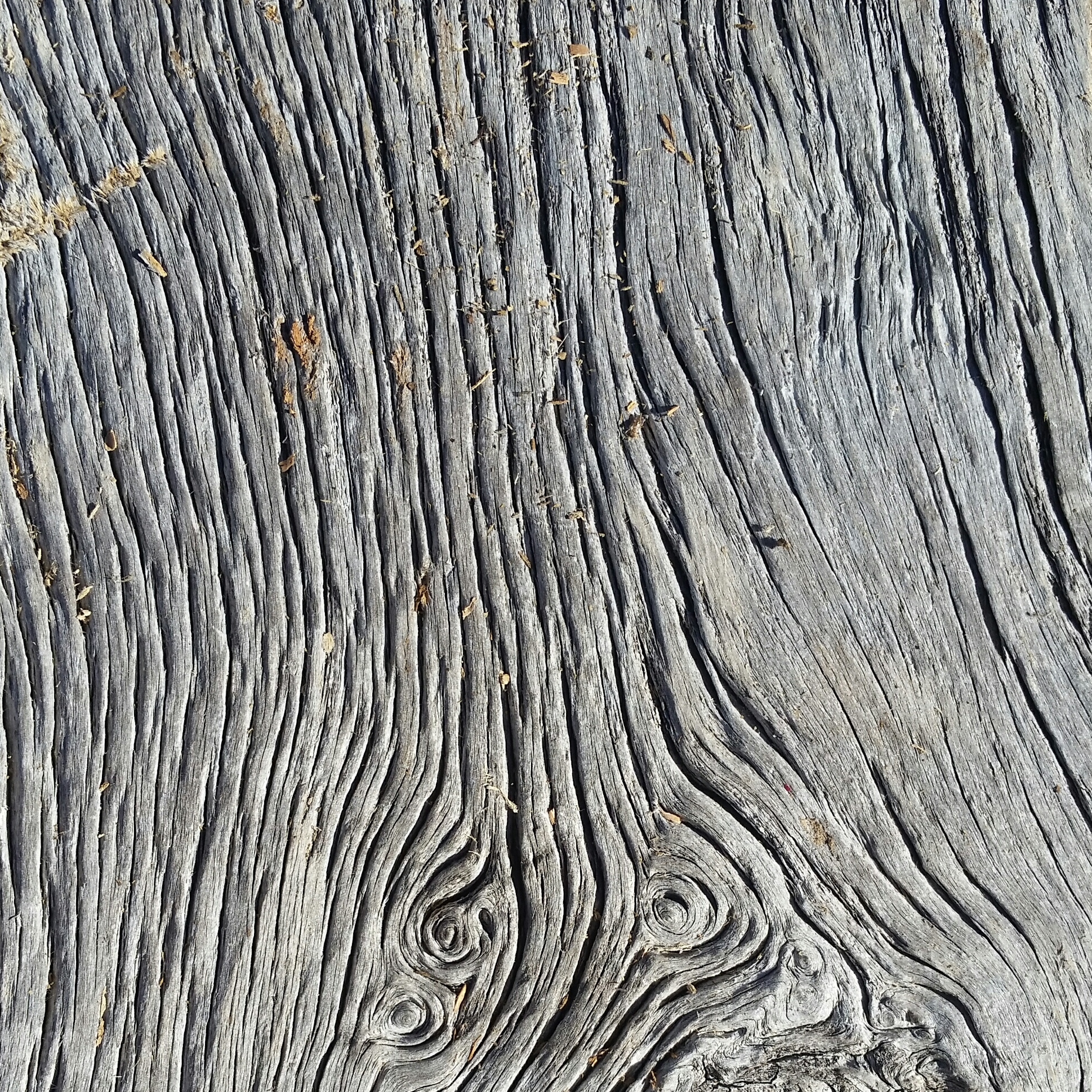 Natural grain of reclaimed gray barn siding