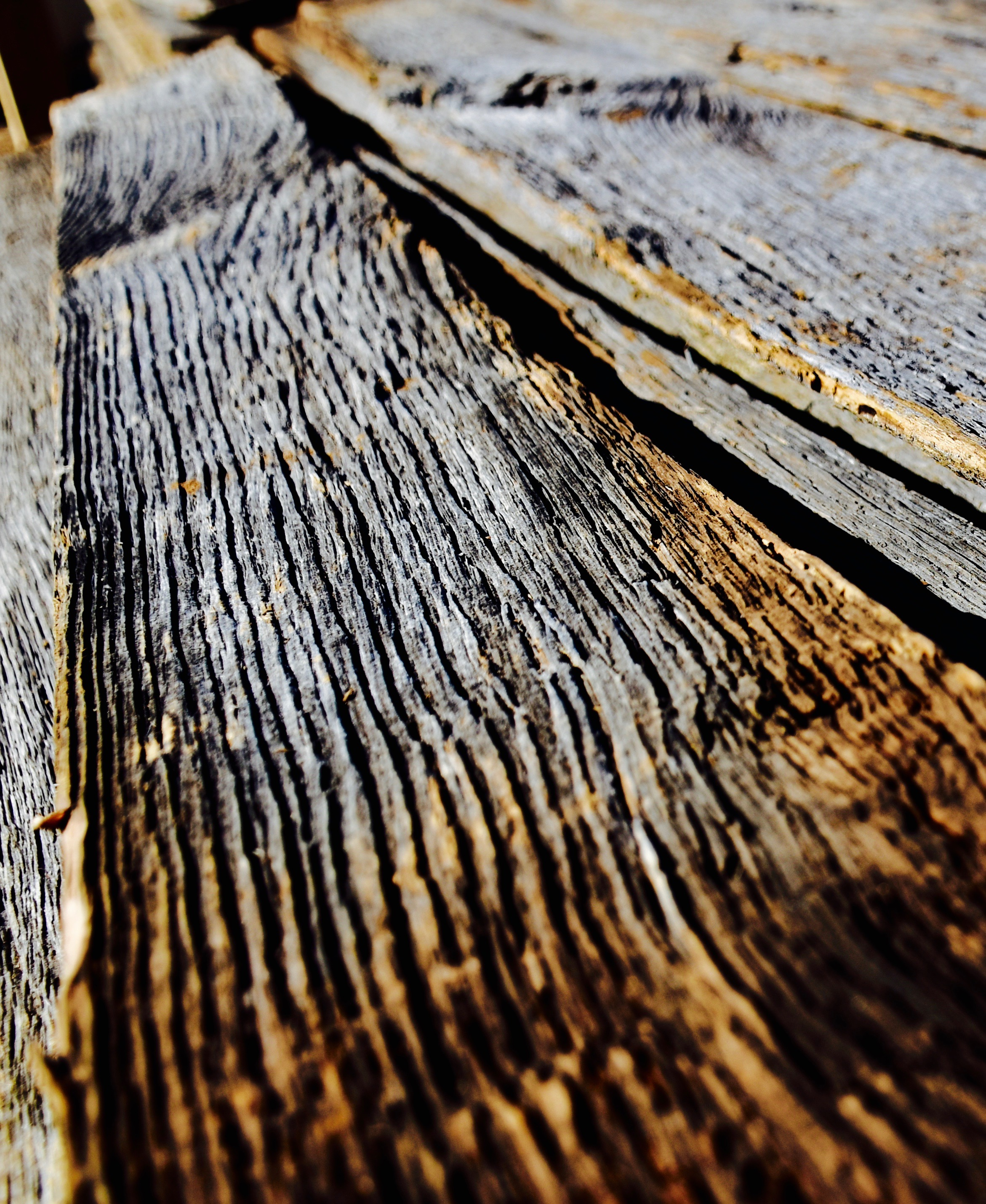 Grey reclaimed barn siding with deep grain that only time and weather can create