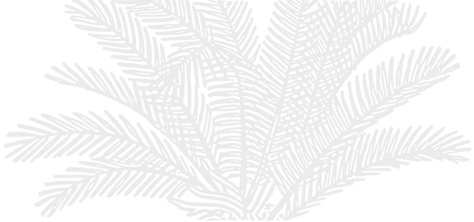 Palm_bg.png