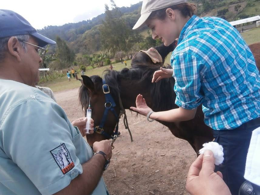 Supporting clinical skills development in Guatemala. Give a man a fish and he will eat for a day, teach a man to fish and he will feed for a lifetime. Brooke's mantra
