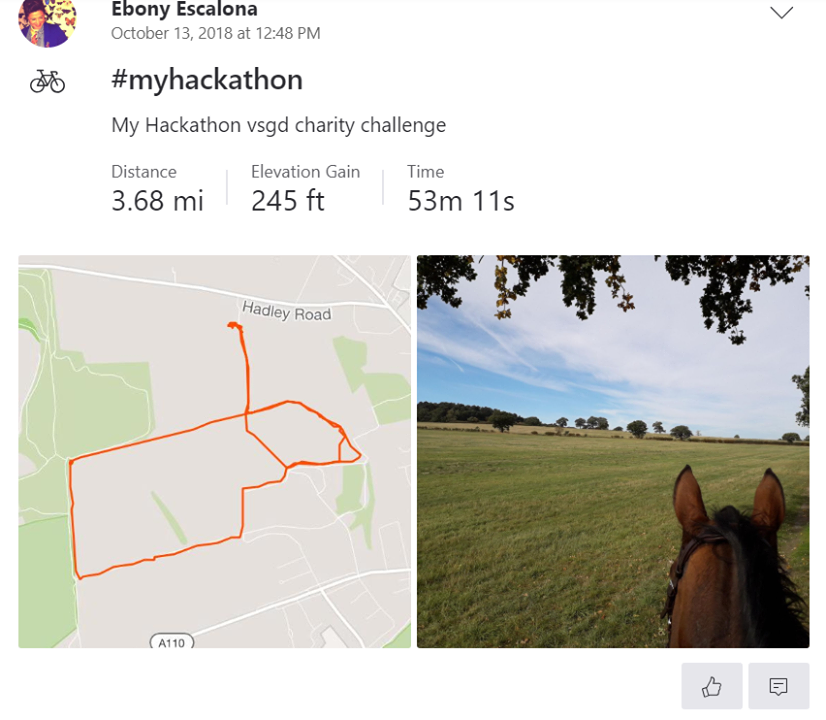 Ebony on her ex-racer Francis Albert for Brooke's My Hackathon charity challenge- ride 100 miles in a 100 days and raise £100 for Brooke https://www.justgiving.com/fundraising/ebony-escalona-vet