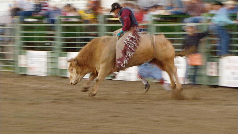 FFOTW_109_bull riding.jpg