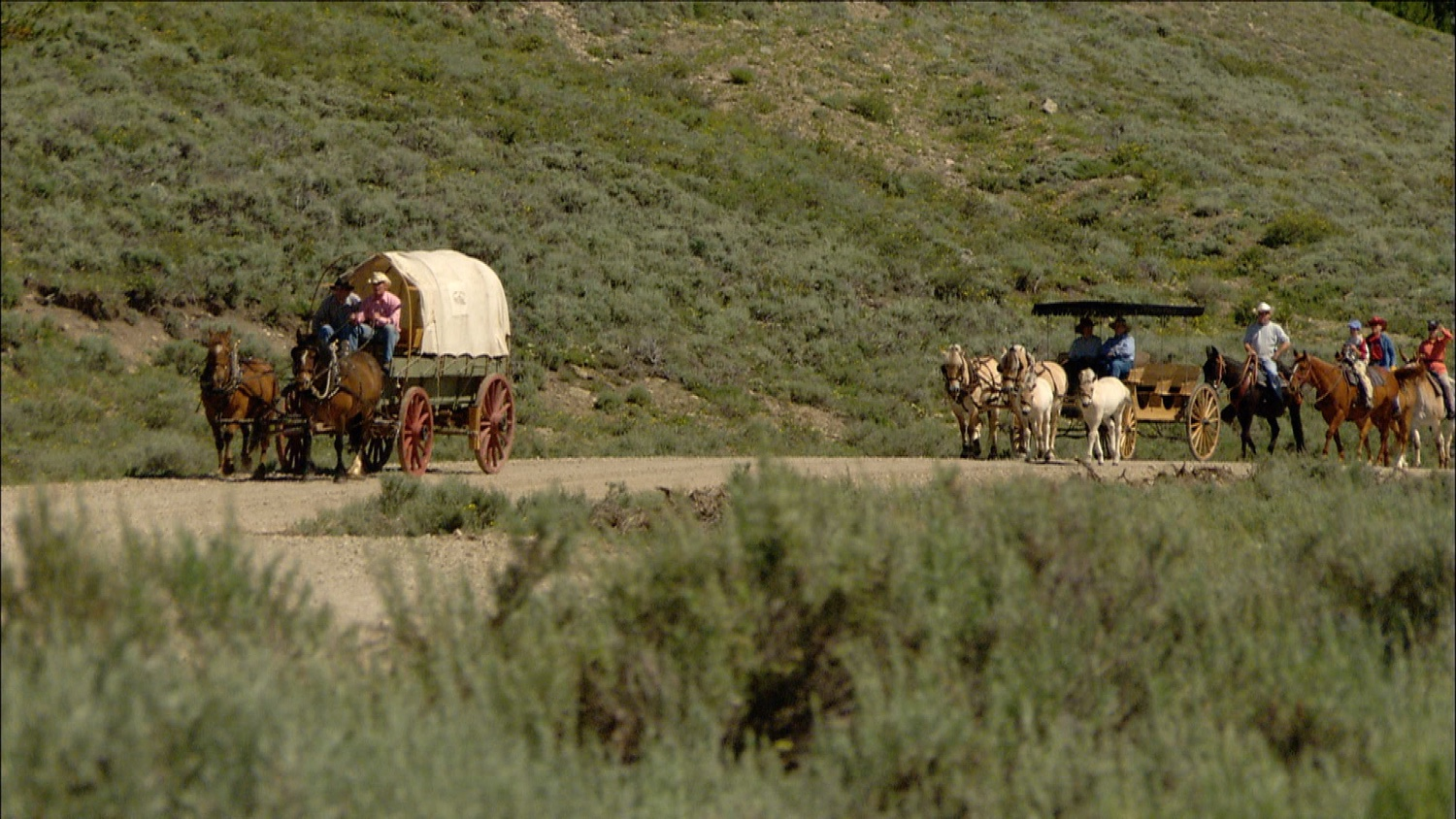 FFOTW_109_wagon train.jpg