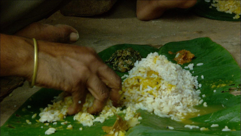 FFOTW_108_eating rice.jpg