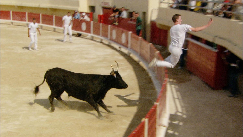 FFOTW_107_guy jumping fence.jpg