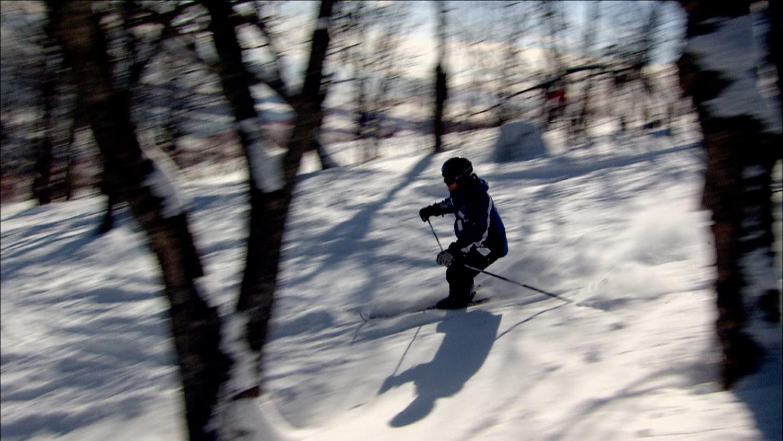 FFOTW_104_forest ski.jpg