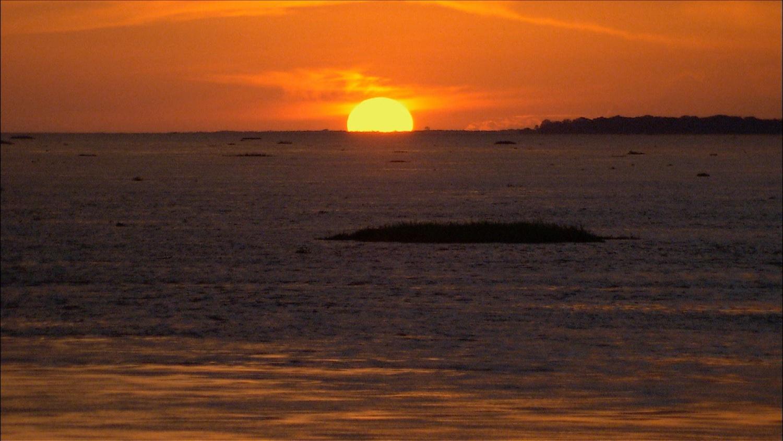 FFOTW_208_Amazon sunset.jpg