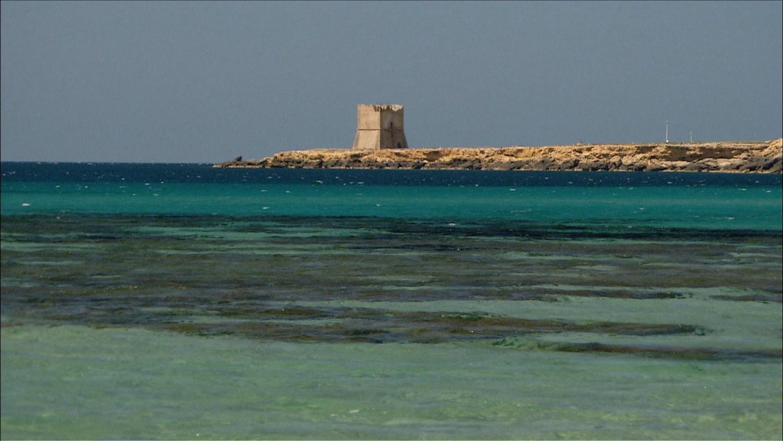 FFOTW_204_castle and ocean.jpg