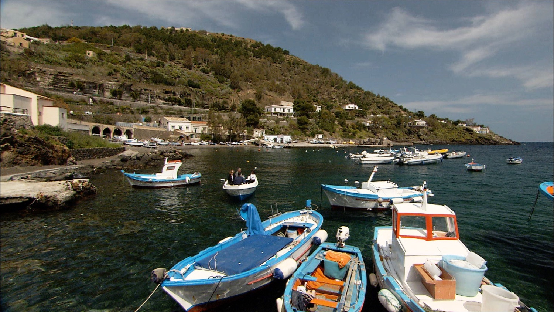 FFOTW_204_boats in the harbor.jpg