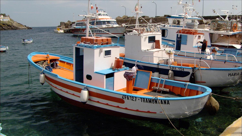 FFOTW_204_boats in island harbor.jpg