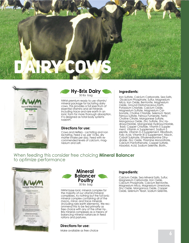 DAILY-COW.jpg