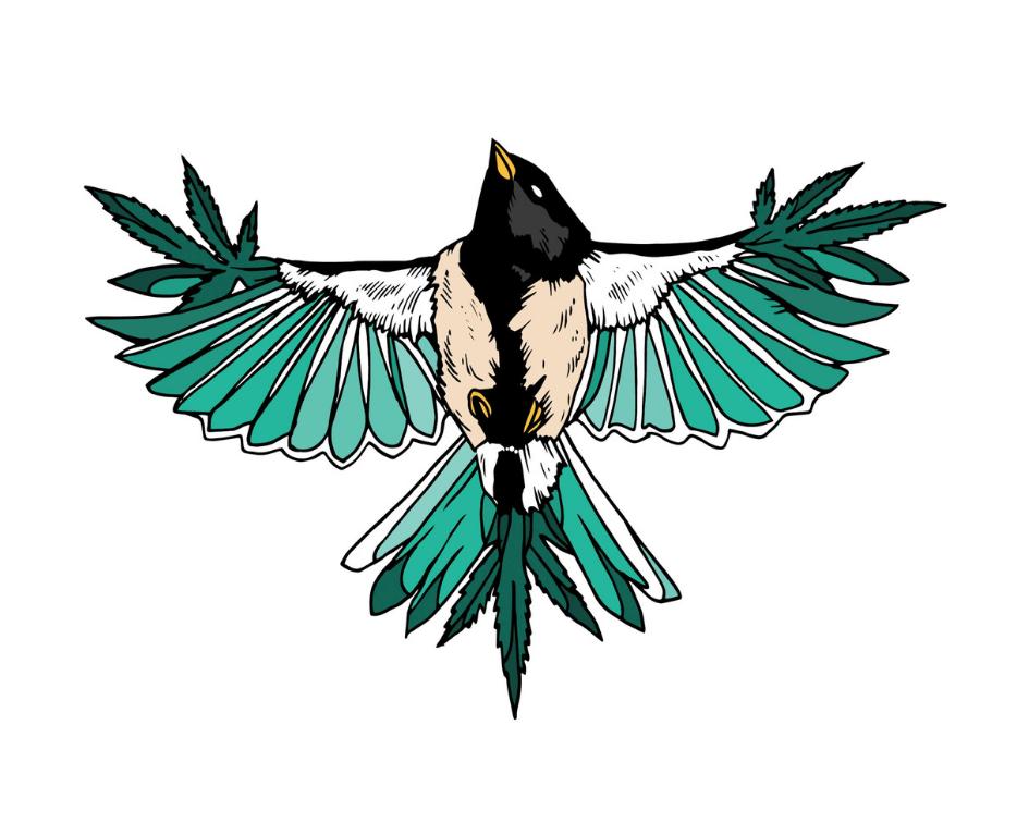 Bird Valley Organics