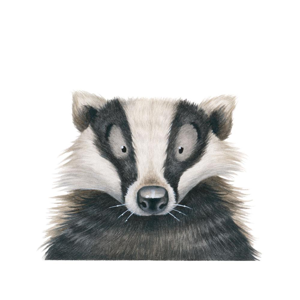 badger-face-kristin-makarius