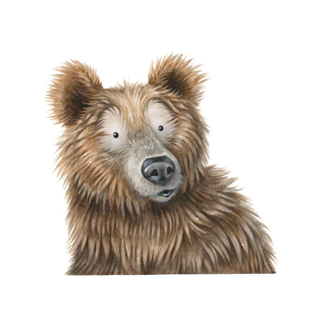 bear-face-kristin-makarius