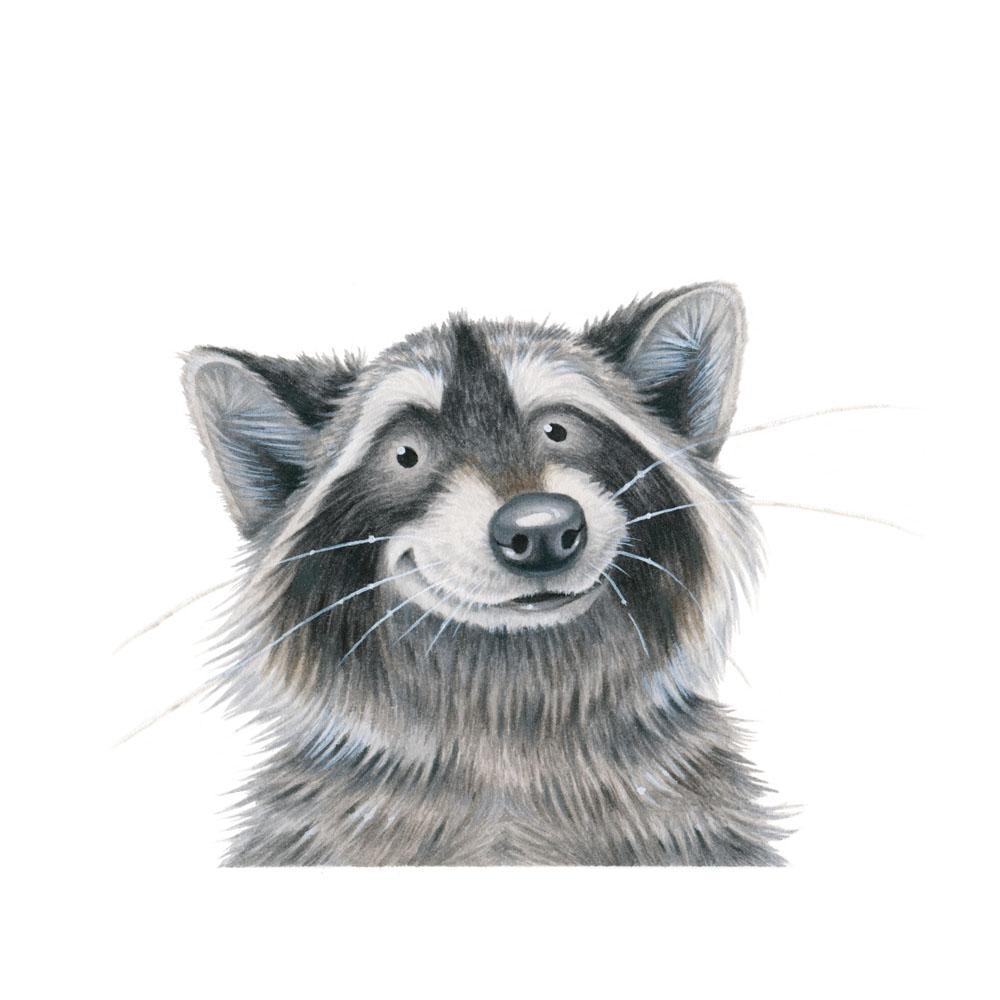 raccoon-face-kristin-makarius