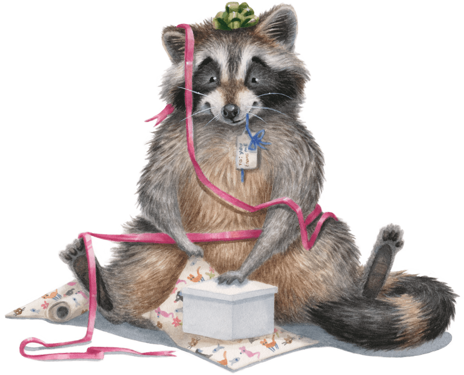 birthday-raccoon-no-border-kristin-makarius-min.png