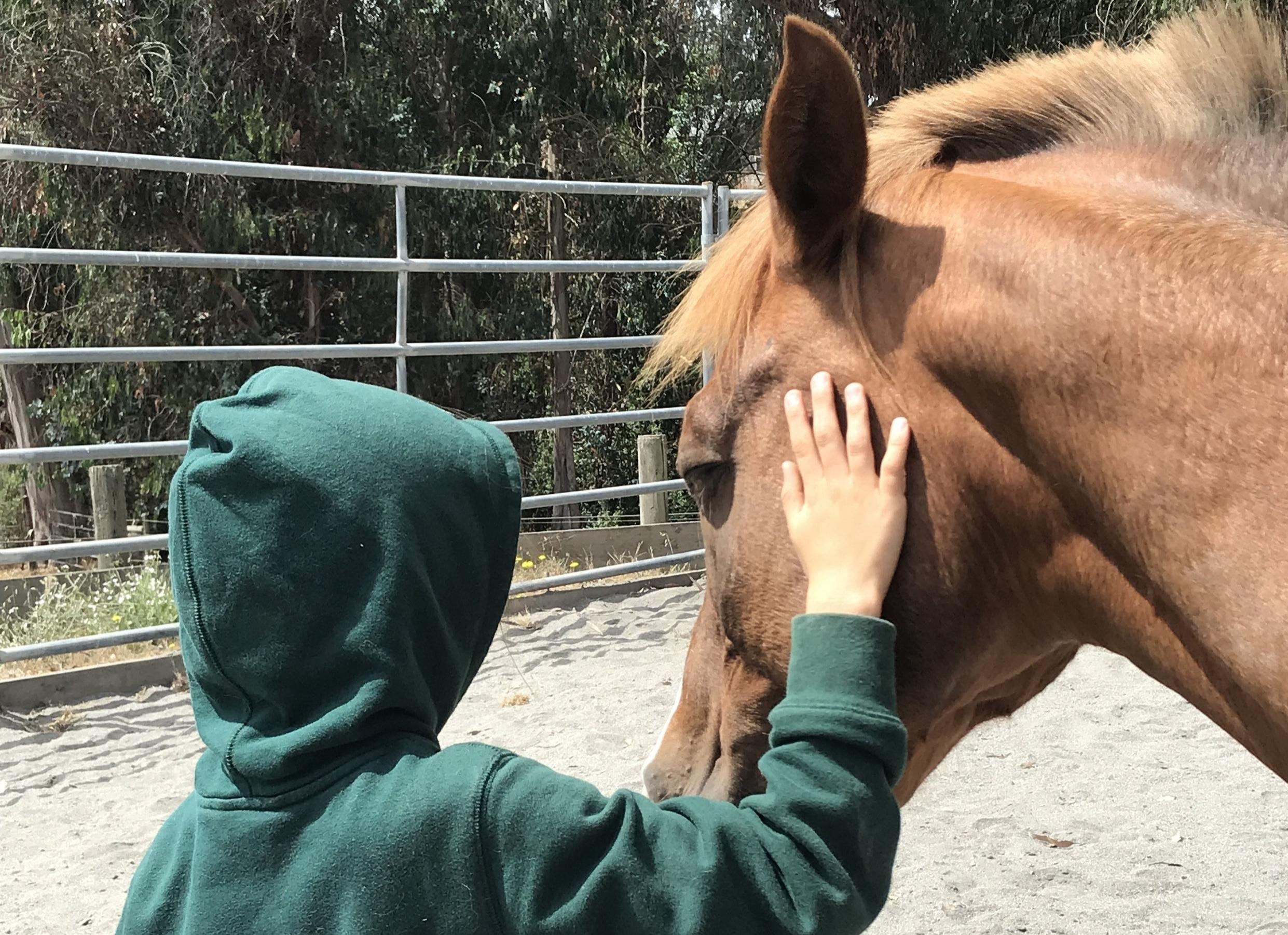 childandhorse.JPG