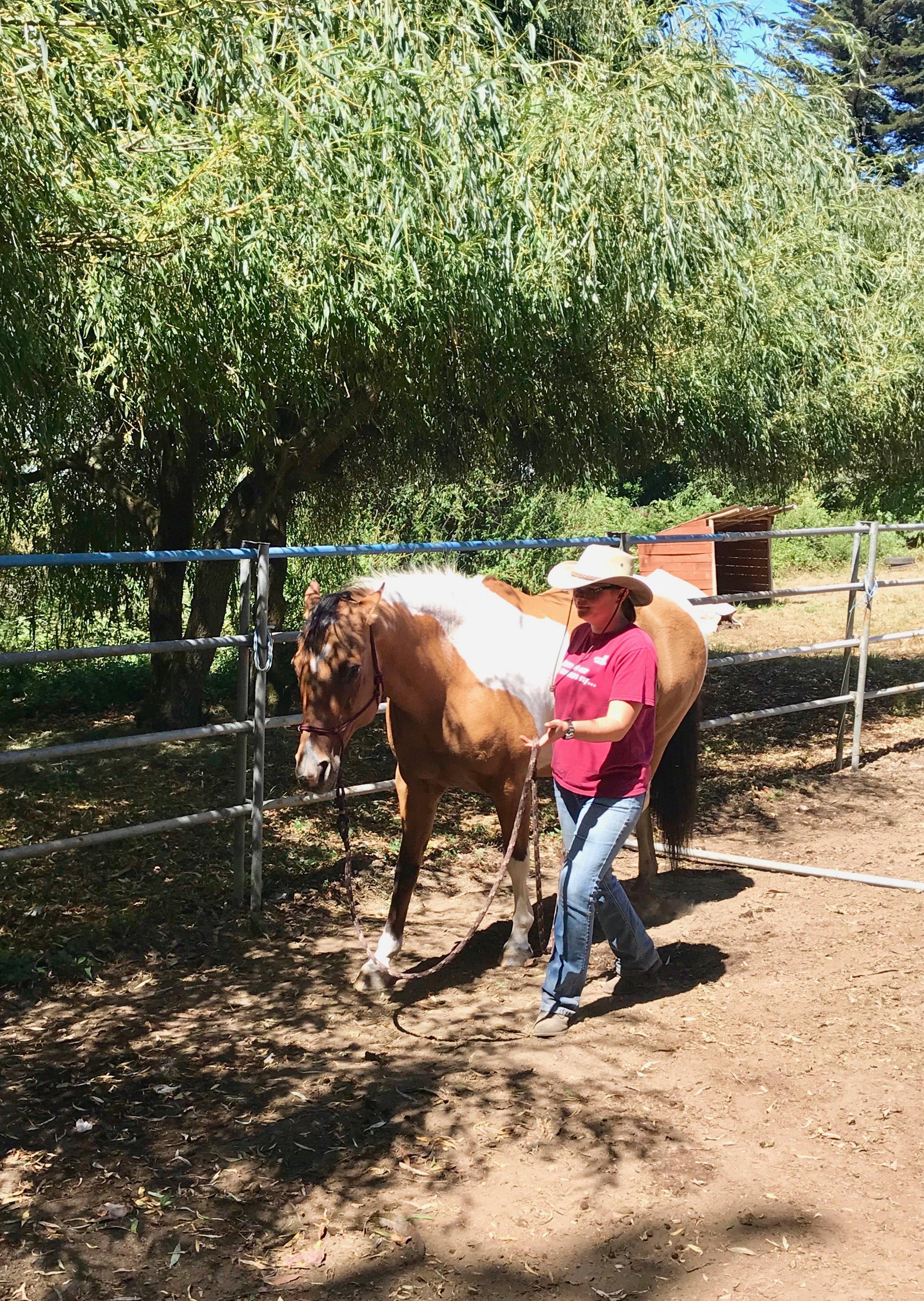 horseandgirl.jpeg