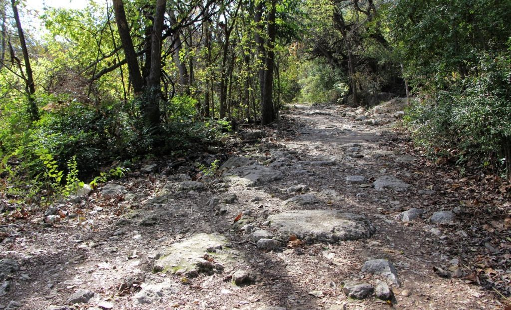 barton-creek-greenbelt-4-1024x622-1024x622.jpg