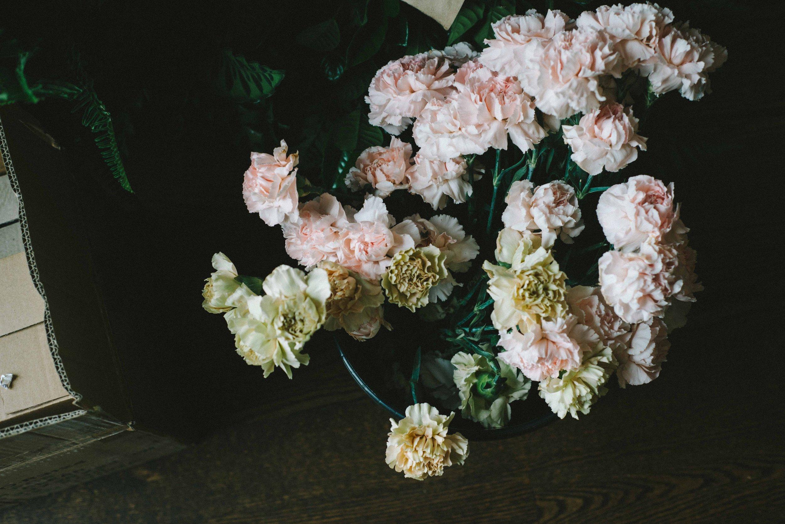 Taffy Floral-0017.jpg