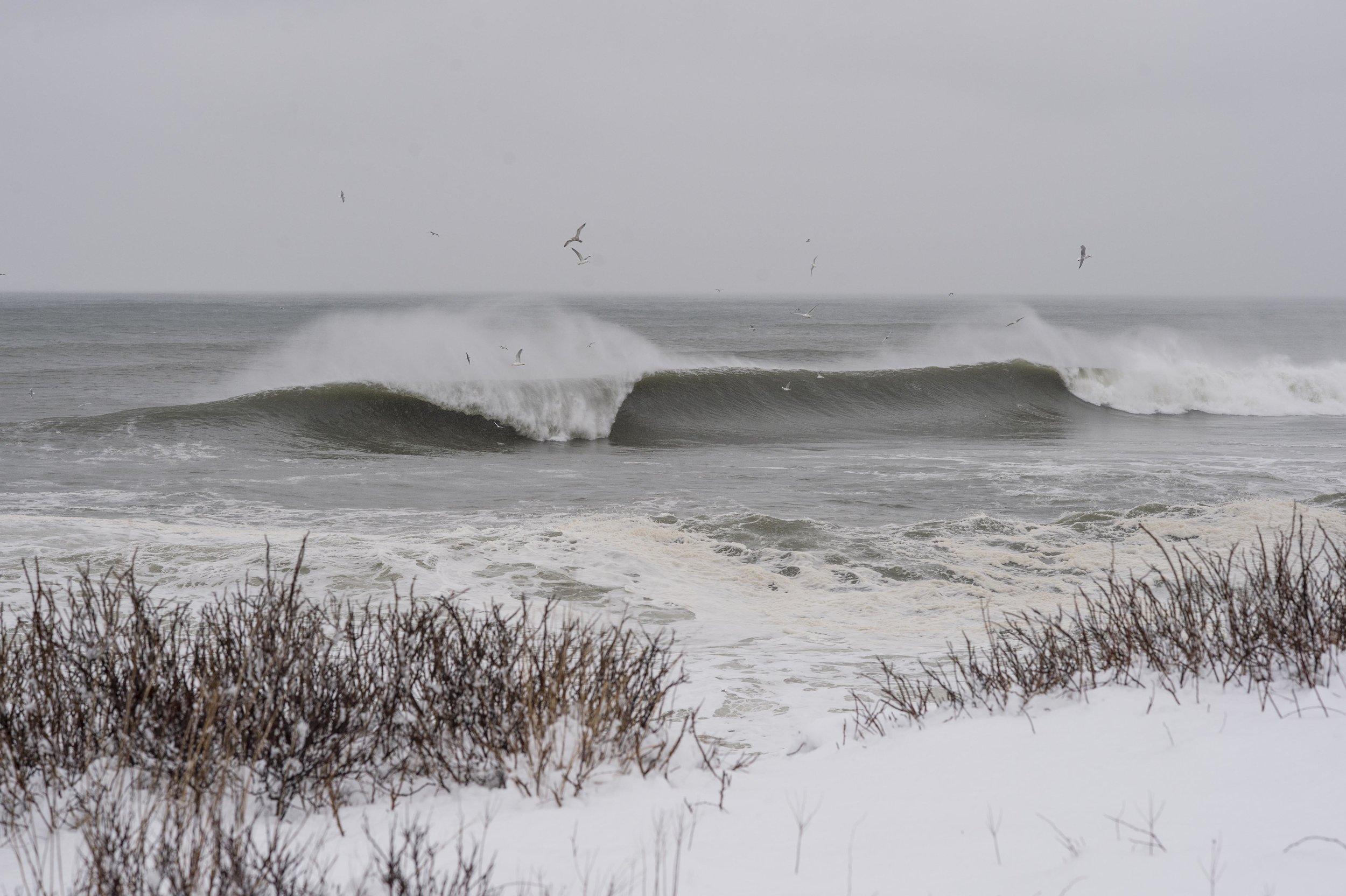 blizzard_MARCH13-11.jpg