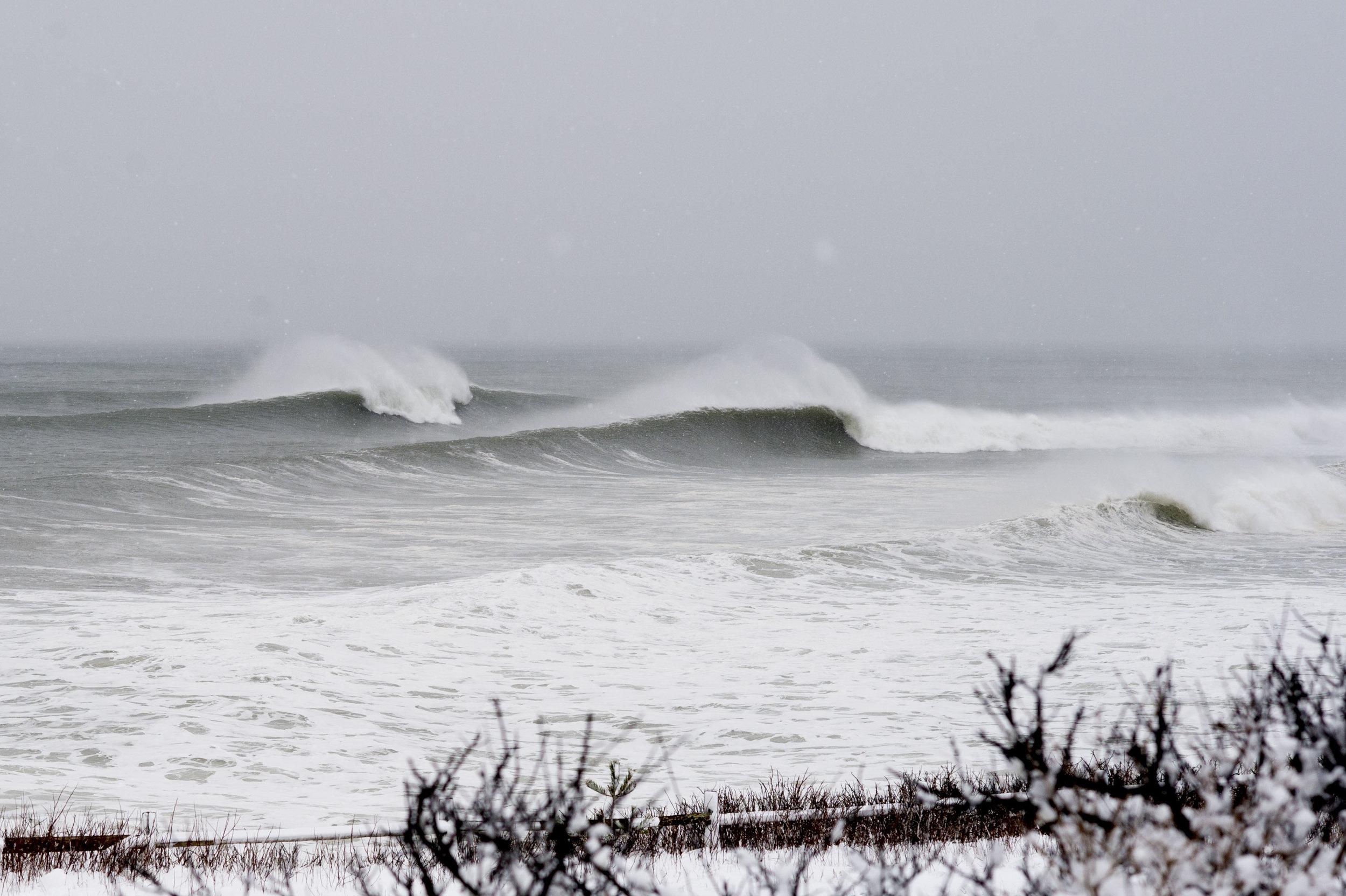 blizzard_MARCH13-5.jpg