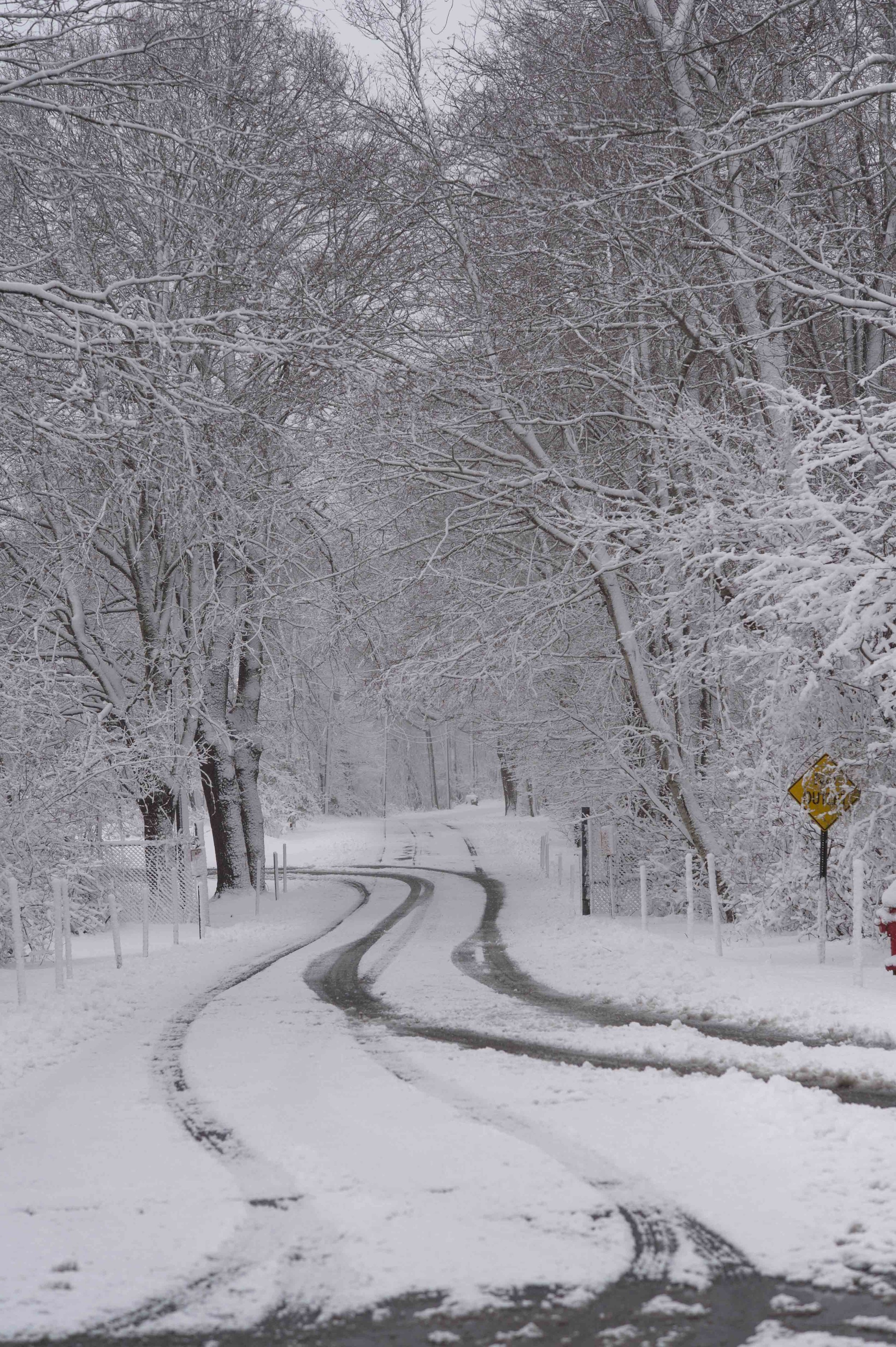 blizzard_MARCH13-3.jpg