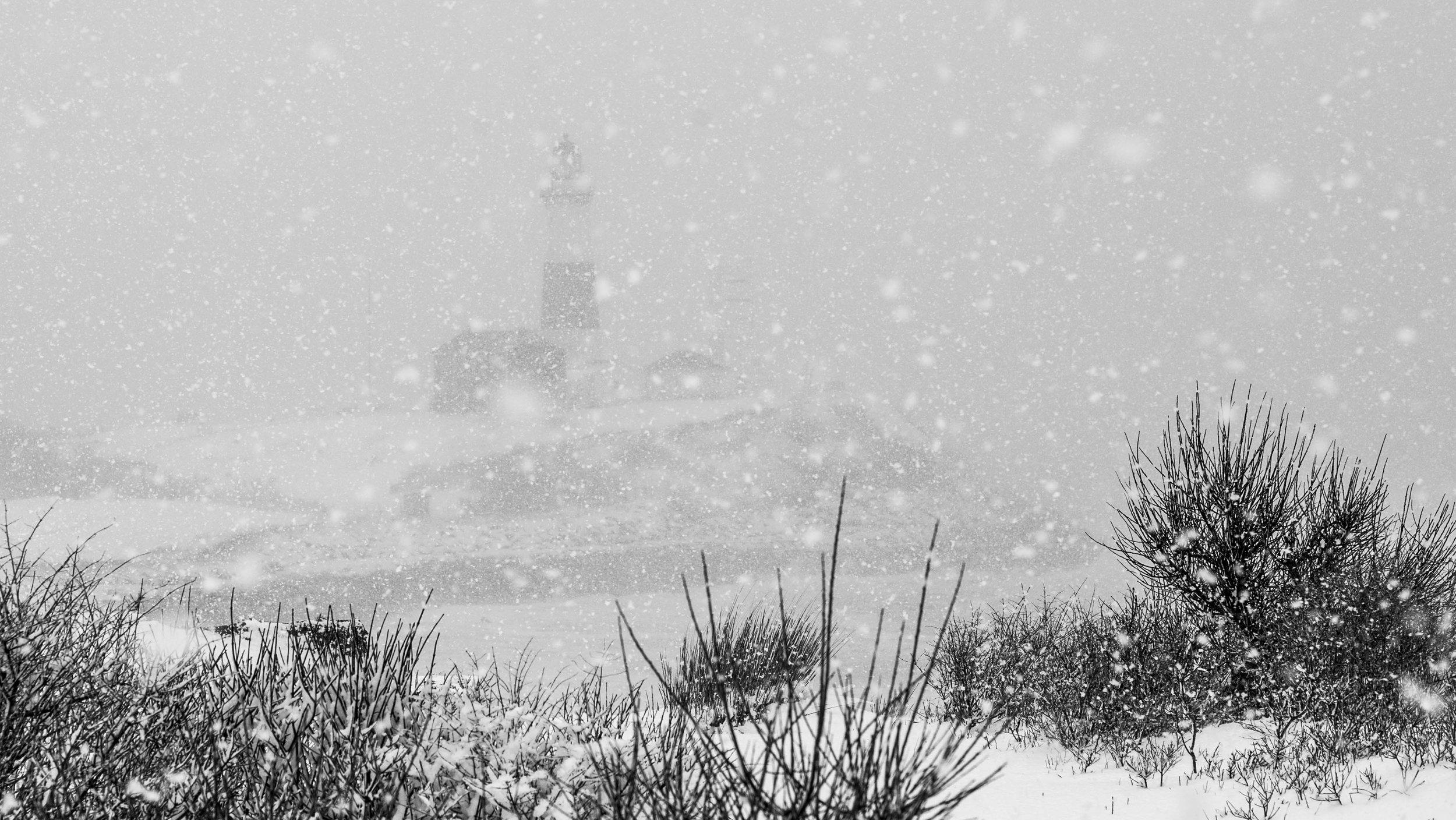 blizzard_MARCH13.jpg