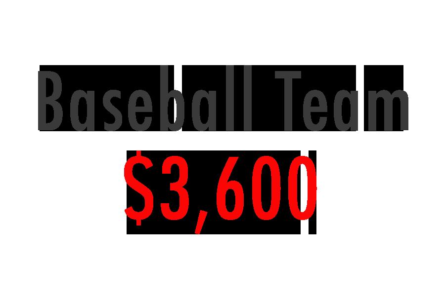 baseball team.png