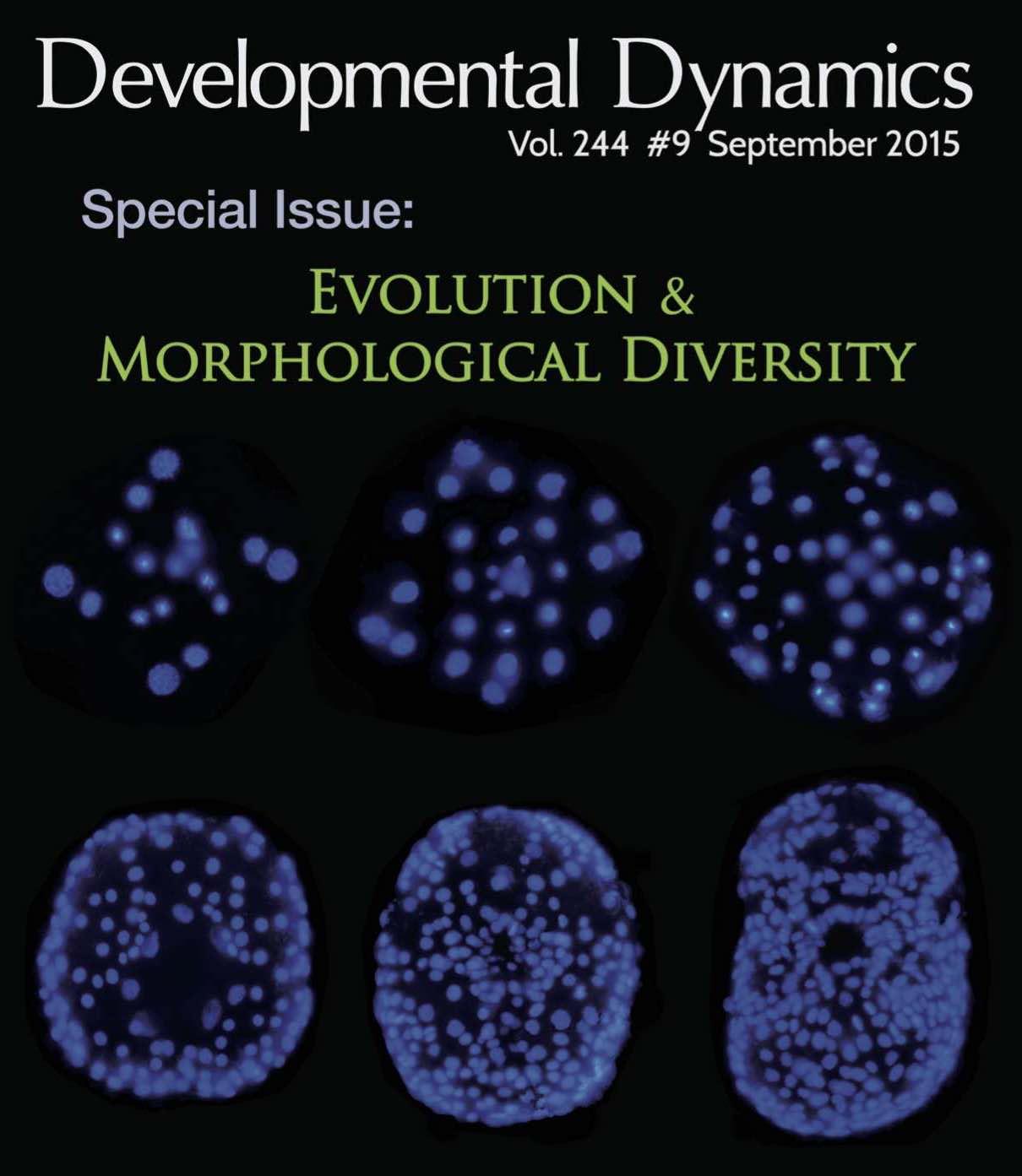 2015-Developmental_Dynamics.jpg