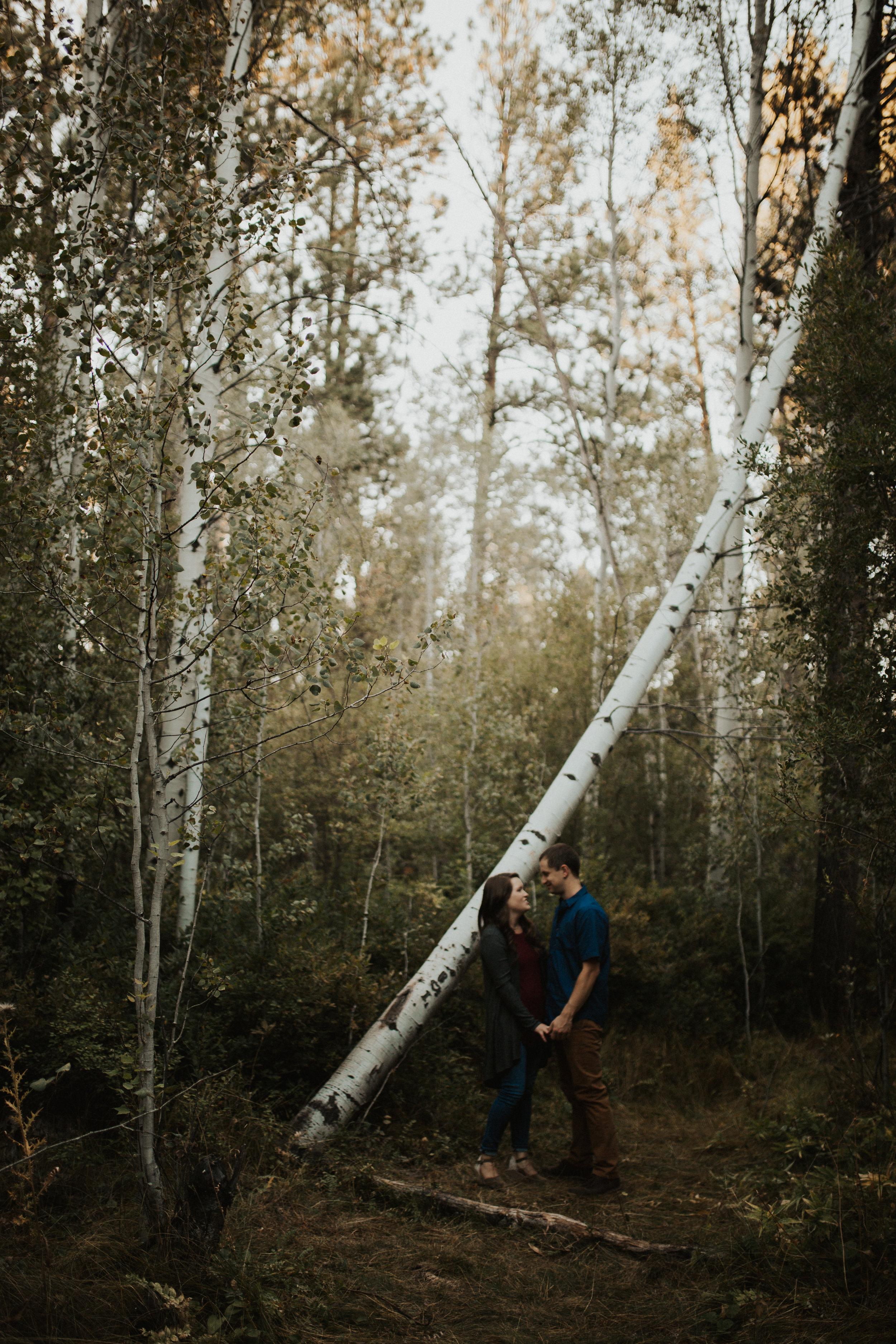 Shevlin Park Engagement Session, Bend Oregon | Rosemary & Pine Photography