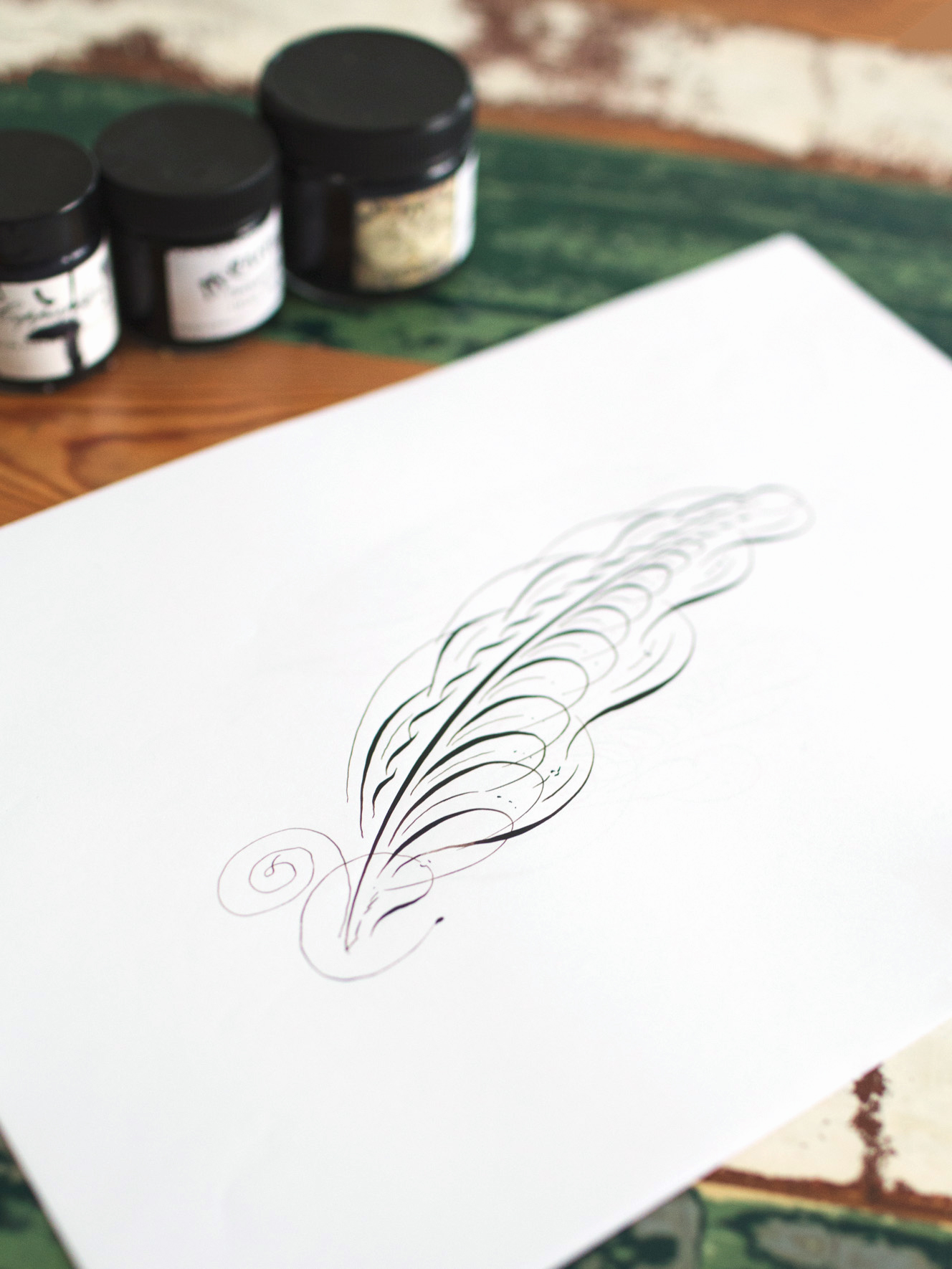 feather1.jpg.jpeg