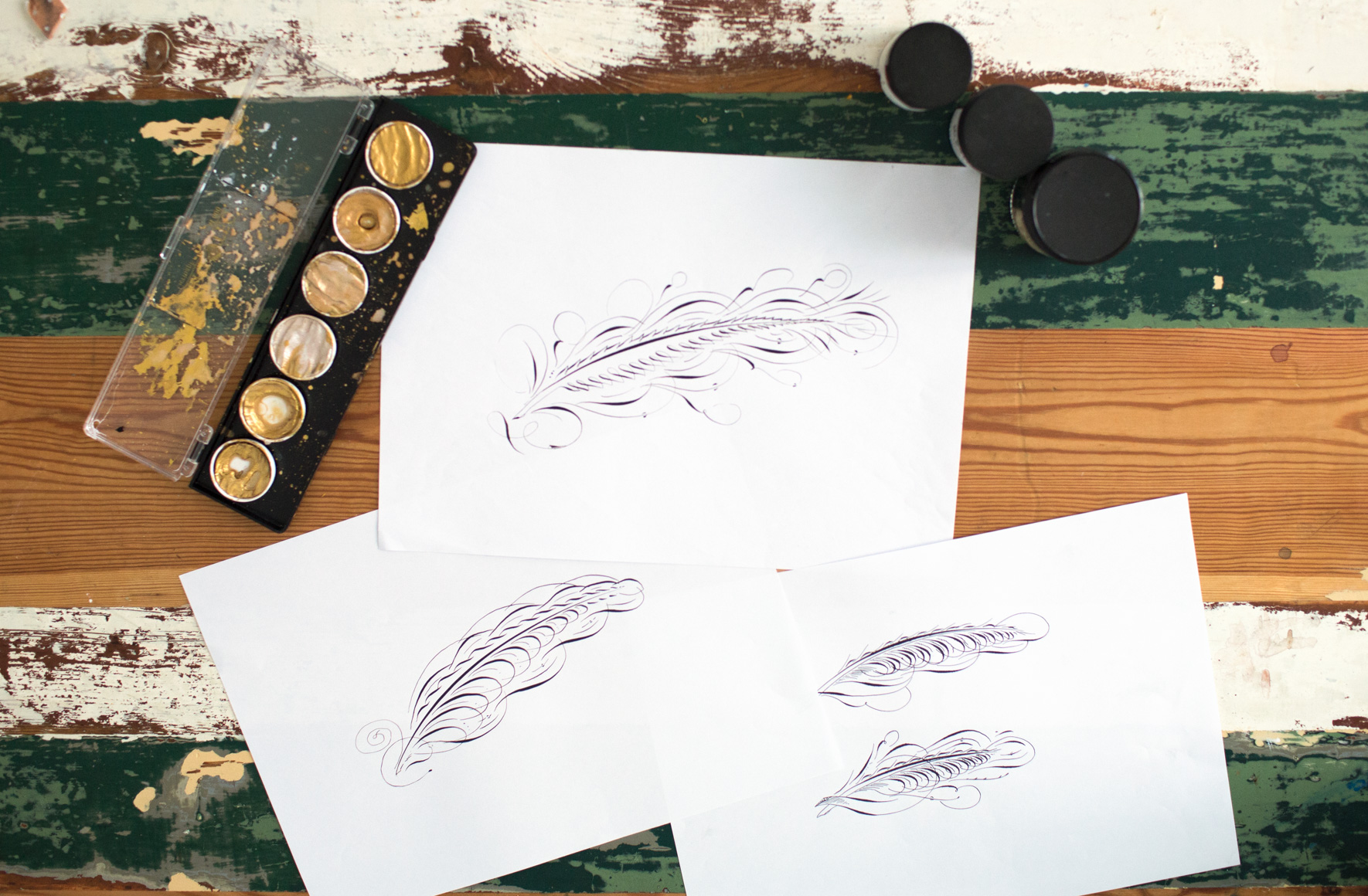 feather3.jpg.jpeg
