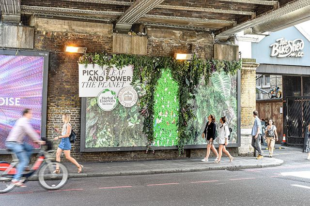We're on a mission to save the butterflies with our interactive billboards for @herbalessencesuk🌿 Each detachable leaf is embedded with wildflower seeds so pick a leaf and power the planet for Mama Nature. . . . #Advertising #Design #HerbalEssences #MamaNature #SavetheButterflies