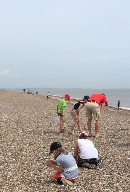 Sizewell bending over beachcomb.jpg