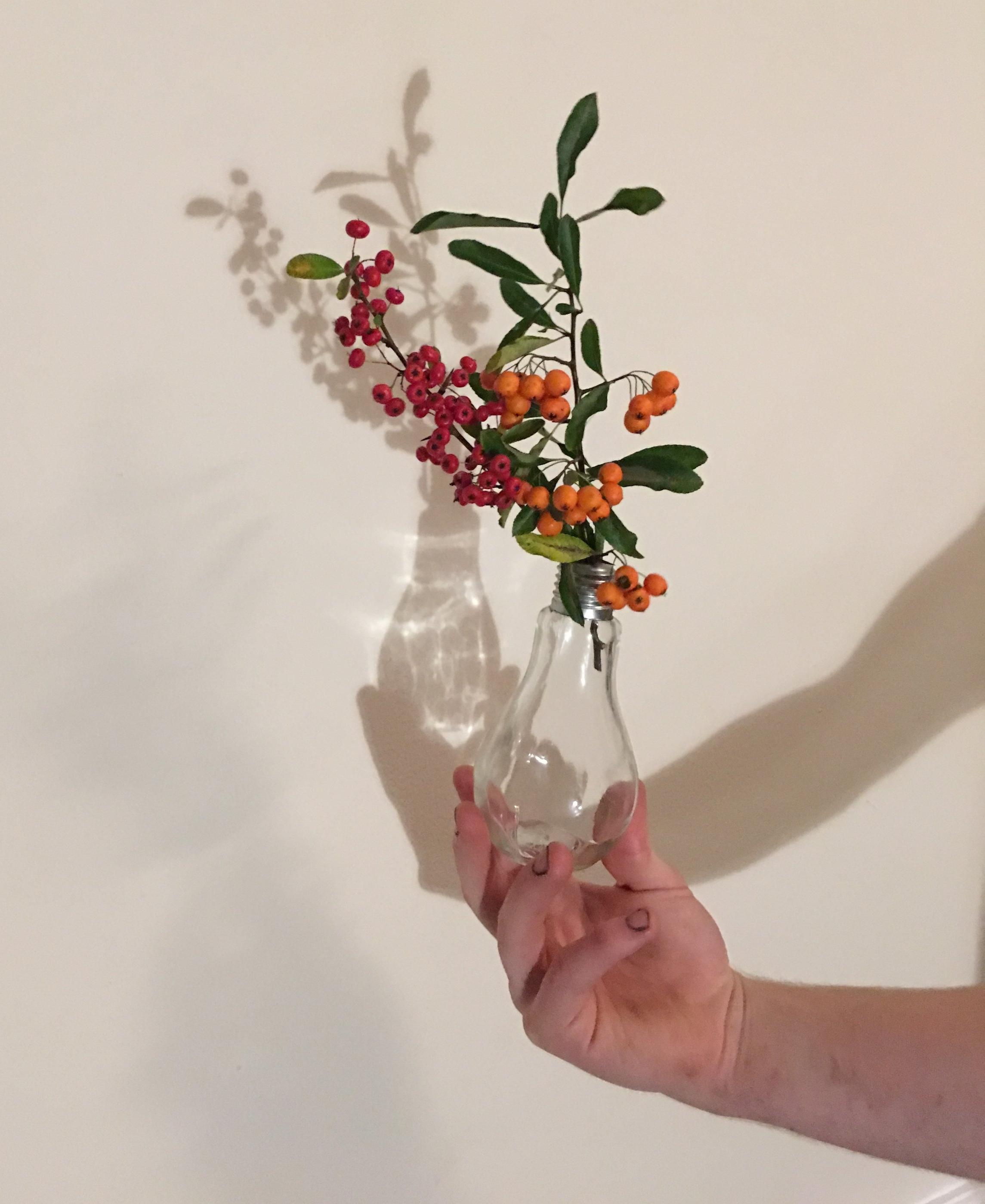 Bulb-vase.JPG